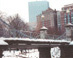 Snow covered Public Garden - Boston Public Garden  Boston, MA Travel Photography